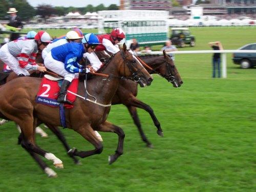 horse-races-york