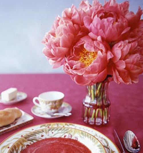 peonies-in-bloom